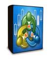 MetaTrader Expert Advisors Library for Forex